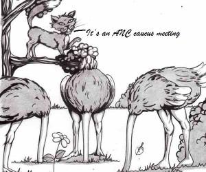 ANC caucus.jpg