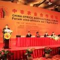 China in Africa.JPG