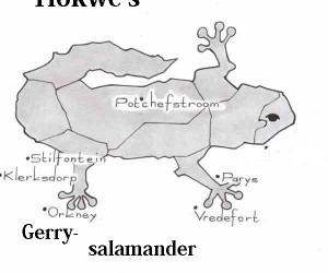 Tlokwe-salamander.jpg