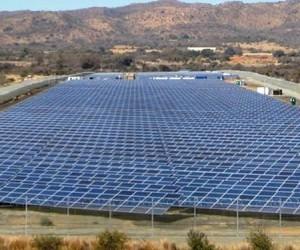 Sun farming.jpg